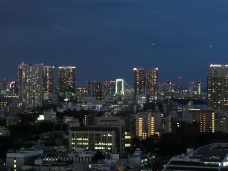 恵比寿ビュータワー外的東京橋夜景